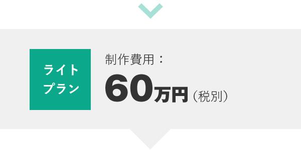 ライトプラン 制作費用:60万円(税別)